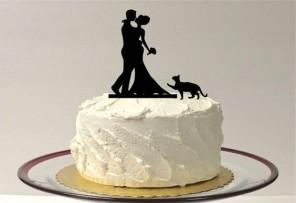 kocie wesele, koty na ślubie, koty jako motyw przewodni ślubu i wesela 17
