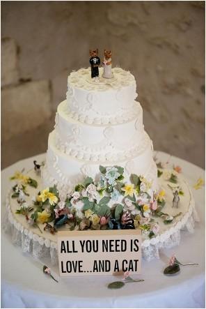 kocie wesele, koty na ślubie, koty jako motyw przewodni ślubu i wesela 20