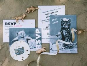 kocie wesele, koty na ślubie, koty jako motyw przewodni ślubu i wesela 3