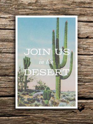 kaktusy-motyw-przewodni-slubu-1