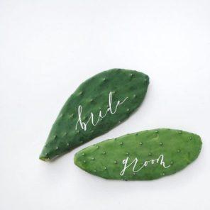 kaktusy-motyw-przewodni-slubu-3