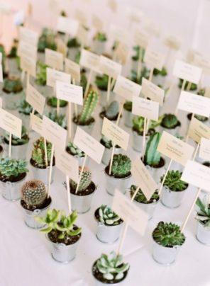 kaktusy-motyw-przewodni-slubu-prezenciki-dla-gosci