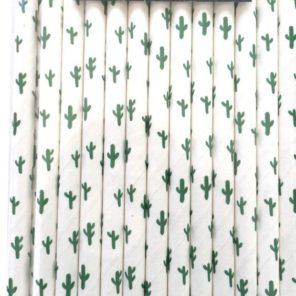 kaktusy-motyw-przewodni-slubu-slomki