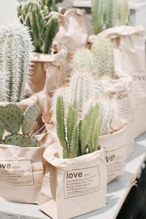 kaktusy-motyw-przewodni-slubu-upominki-dla-gosci