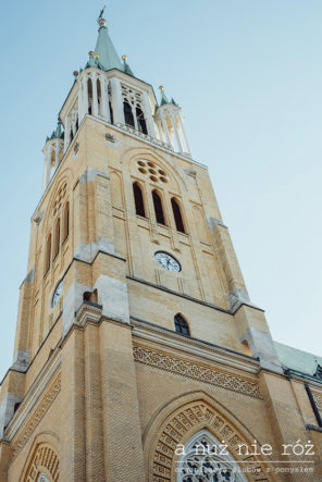 slub-wesele-w-katedrze-lodz-a-nuz-nie-roz